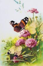 Бабочки. Размер - 15 х 23 см.