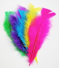 Перья индюшачьи неоновые цвета.