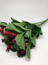 Шиповник,цв.бордовый