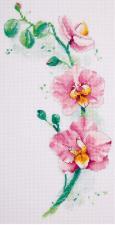Орхидея. Размер - 18 х 30 см.