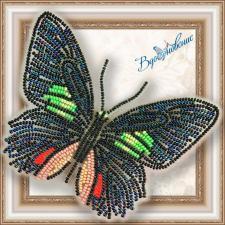 """Набор для вышивки бисером на прозрачной основе """"Бабочка """"Parides sesostris zestos"""""""""""