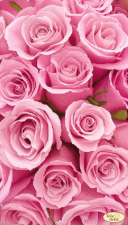 Розовые сны. Размер - 24 х 42 см.