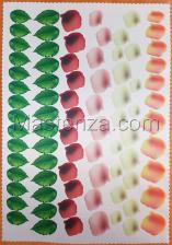 Заготовка для аппликаций на ткани (лепестки и листья мака) ОАР-6,А3