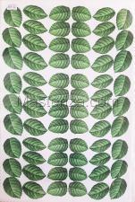 Заготовка для аппликаций на ткани (листья) ОАР-47,А3