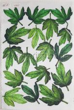 Заготовка для аппликаций на ткани (листья пиона) ОАР-79-3