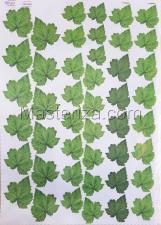 Заготовка для аппликаций на ткани (листья малины) ОАР-107,А3