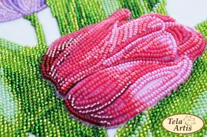 Тэла Артис | Тюльпаны. Размер - 23 х 33 см