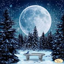 Тэла Артис   Луна. Размер - 30 х 30 см
