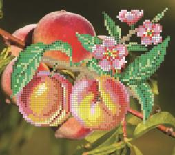 Картины бисером | Схема Персики. Размер - 18 х 16 см