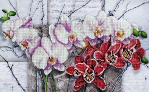 Симфония орхидей. Размер - 45 х 28 см.
