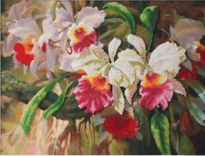 Орхидеи. Размер - 39 х 29 см.
