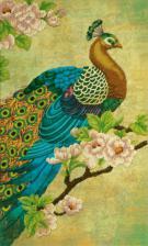 Райская птица. Размер - 27,5 х 46 см.