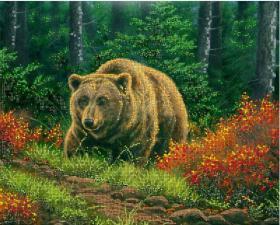 Бурый медведь. Размер - 40 х 32 см.