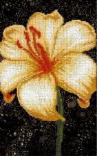Лилия. Размер - 11 х 17,5 см.