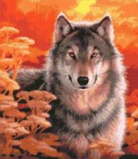 Волк на закате. Размер - 35,6 х 40,6 см.