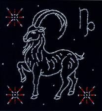 "Знак зодиака ""Козерог"". Размер - 18 х 18 см."